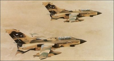 Photo of تدريبات جويه بين القوات الجوية السعودية والباكستانية