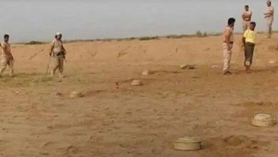 Photo of الجيش اليمني ينزع 680 لغما حوثي ..فيديو