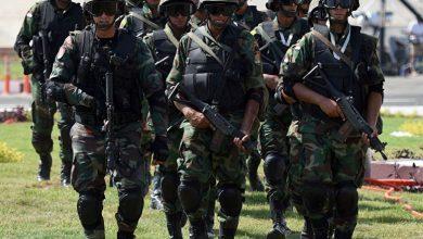 Photo of لقطات من تدريبات قوات الصاعقة المصرية على مكافحة الإرهاب… فيديو