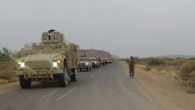 Photo of الحوثيون يفرون في جبهات الساحل الغربي بالمئات