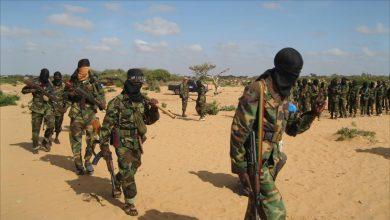 Photo of وثائق تثبت دعم تركيا العسكري لحركة الشباب في الصومال