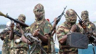 Photo of مقتل 20 من مسلحي بوكو حرام في (بورنو) على يد الجيش النيجيري