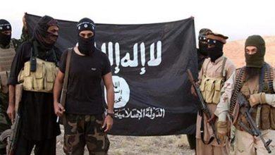 Photo of القوات العراقية تشن حملة لمطاردة بقايا تنظيم الدولة