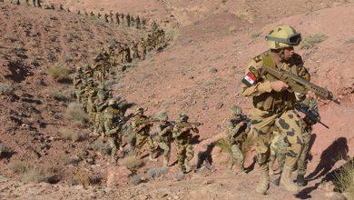 Photo of الجيش المصري يقتل 13 إرهابيا ويعثر على أسلحة وذخائر في سيناء..فيديو