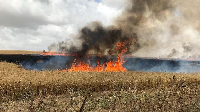 إسرائيل تقر بفشل التصدي لبالونات غزة الحارقة التي عادت للظهور مجددا