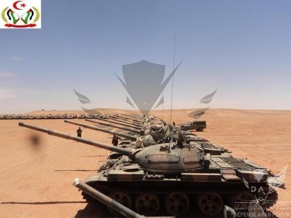 Polisario T55s.jpg