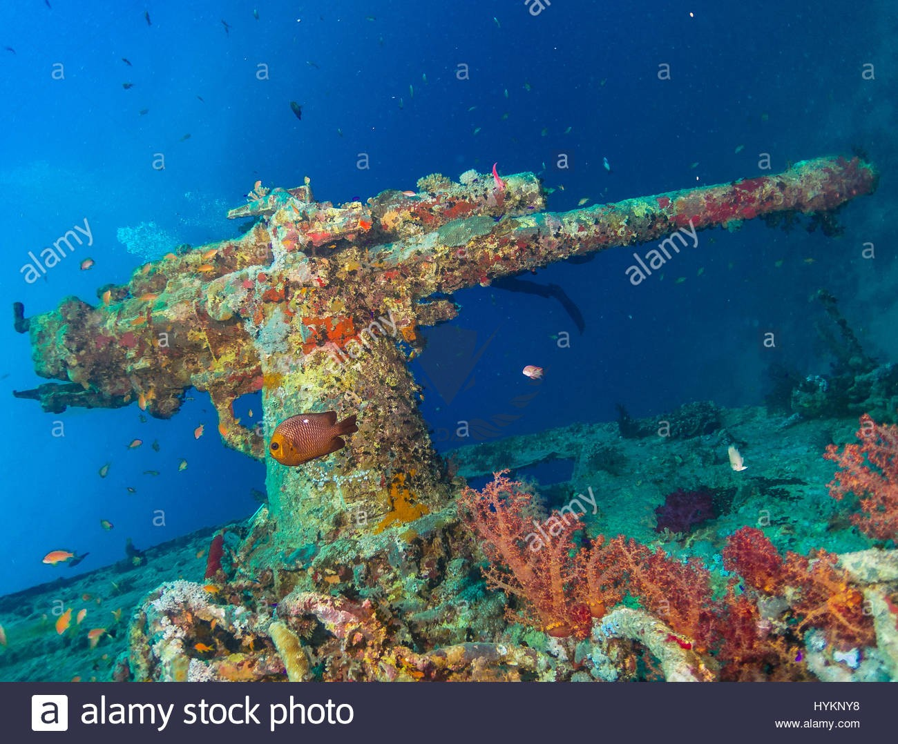 red-sea-egypt-picture-of-a-mounted-gun-incredible-images-show-vehicles-HYKNY8.jpg