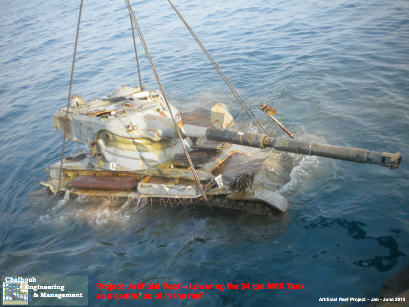 Chalhoub-Artificial-Reef-07.png