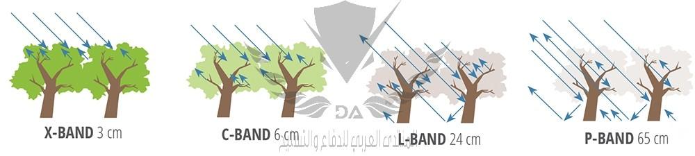 bands of SAR.jpg