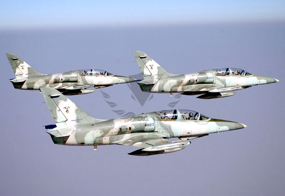 aero-l39-albatros-advanced-jet-trainer-light-strike-aircraft-czechoslovakia_17.jpg