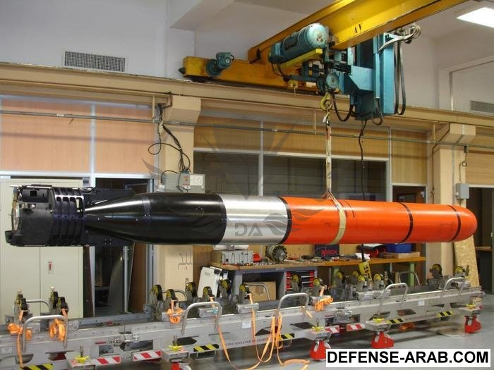 DCNS-picks-Saft-to-power-F21-torpedoes.jpg